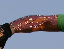 Инструмент волшебная палочка в Paint.NET