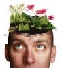 Огород на голове