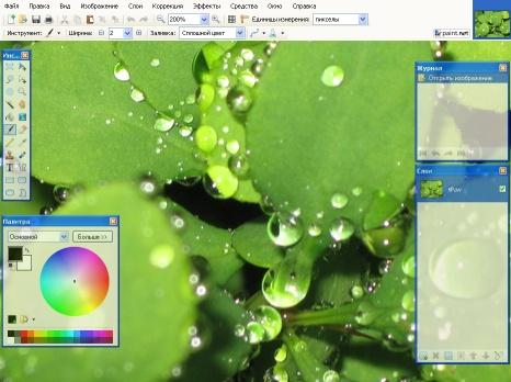 бесплатный редактор paint.net